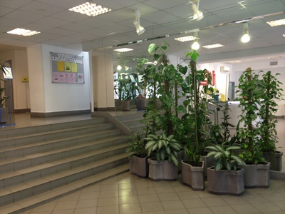 Компания 1С-Учебный центр №3 фото 6