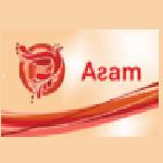 Образовательный центр Агат